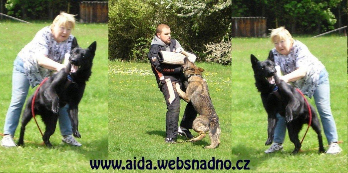 http://www.aida.websnadno.cz